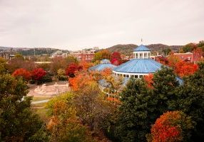 coolidge park chattanooga friday five november